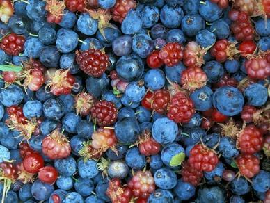 Польза и вред ягод