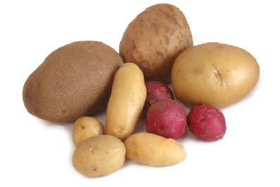 польза и вред картофеля
