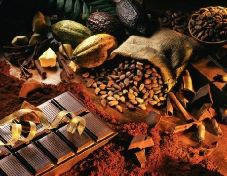 Употребление какао при беременности