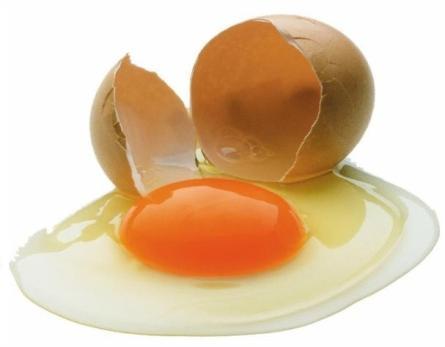 История яиц