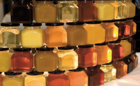 Сорта мёда
